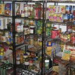 Prepper's Will - Saving Pets During Disasters